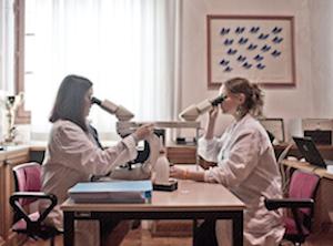 Un nuovo archivio per l'Istituto Ramazzini, centro di ricerca contro il cancro