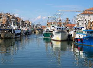 Un progetto per l'innovazione  nella filiera ittica